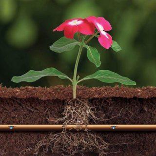 Подземный капельный полив цветов и растений